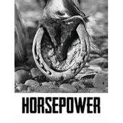 2013 HORSEPOWER Syrah 'Tribe Vineyard' CAYUSE Walla Walla